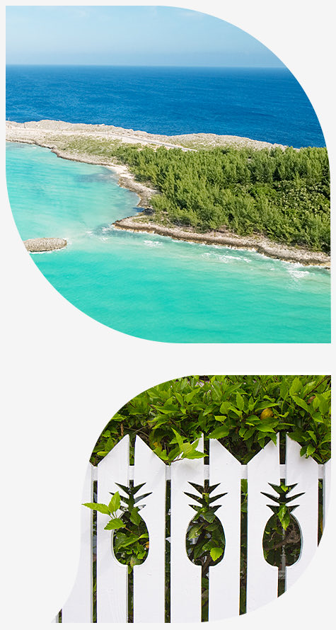 2 petals with images, one with the glass window bridge in Eleuthera Bahamas and the other with a white fence with pineapple cut outs