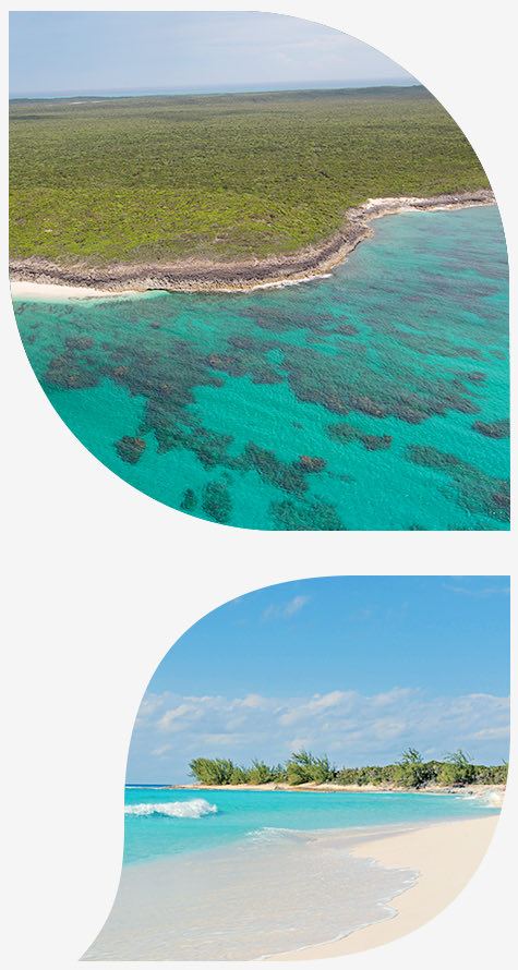 view of clear blue water reaching land in top image and view of beach in bottom image