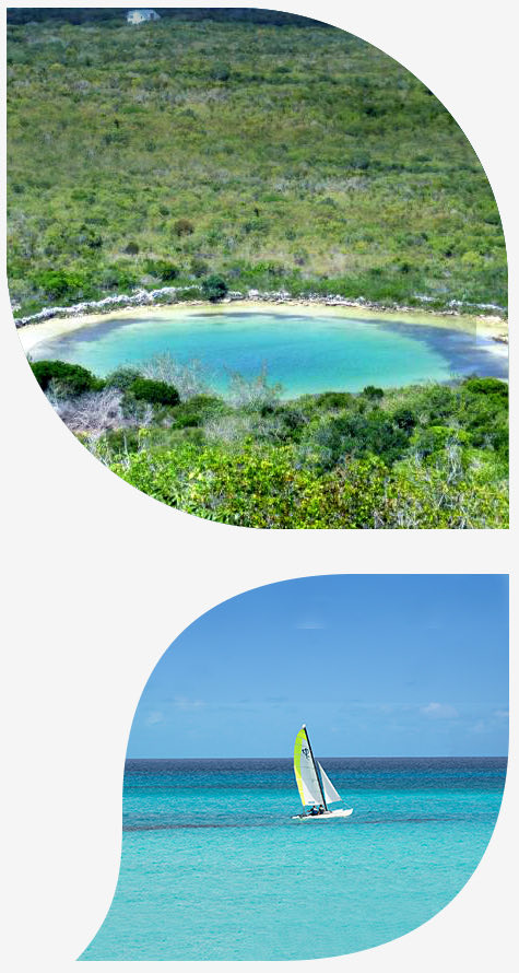 bmot san salvador mainsite island insider petals images watlings blue hole