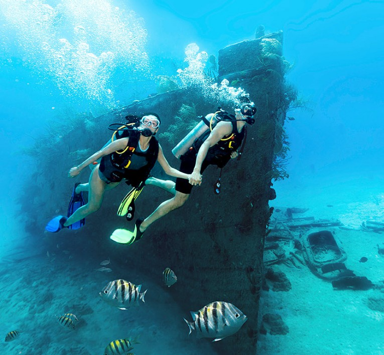 Scuba divers exploring a sunken ship