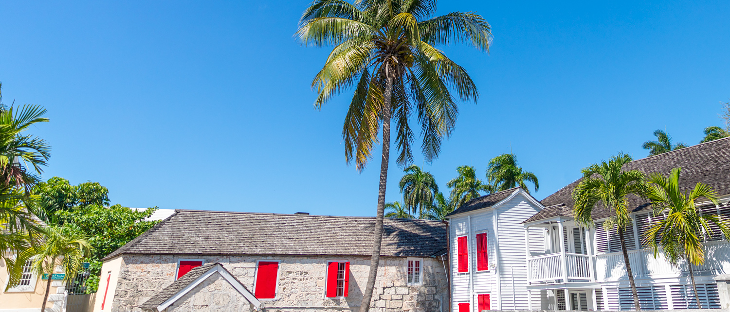 buildings with palm tree